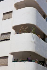 Edificio Bauhaus-Dana Friedlander